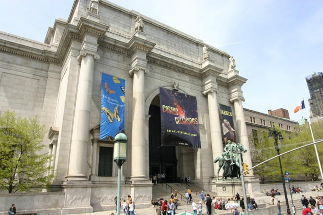 Natural History Museum New York Eintritt