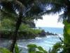 Lage des Hawaiian Tropical Botanical Garden - direkt am Meer