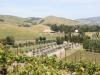 Sonoma Valley Weinanbaugebiete