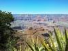 Grand Canyon Ausflug