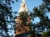 Harvard Universitätsgelände
