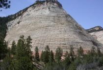 Checkerboard Mesa, Zion Nationalpark