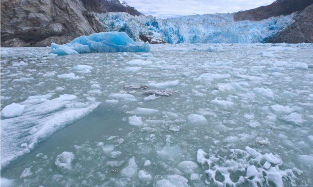Glacier Bay Nationalpark in Alaska