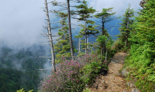 Südstaatenromantik im Great Smoky Mountain Nationalpark