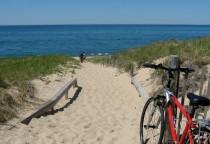 Strand auf Cape Cod