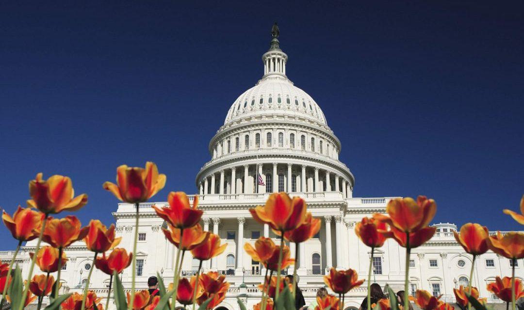 Washington, D.C. – Hauptstadt der Vereinigten Staaten