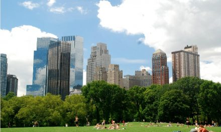 der Central Park in New York