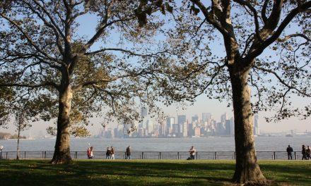 die TOP Sehenswürdigkeiten in New York