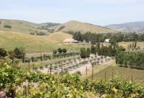 Weinanbaugebiete im Sonoma Valley