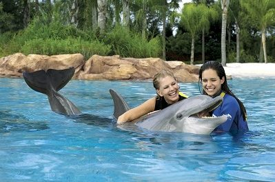 Schwimmen mit Delphinen in Discovery Cove