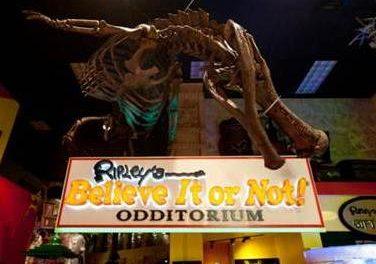 Ripley's – das etwas andere Museum