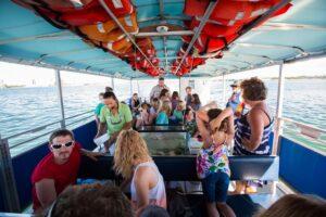 Ecoboat Tour, Mote Marine Aquarium