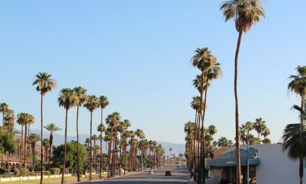 Palm Springs – Faszination pur