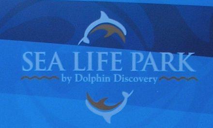 Sea Life Park außerhalb von Honolulu
