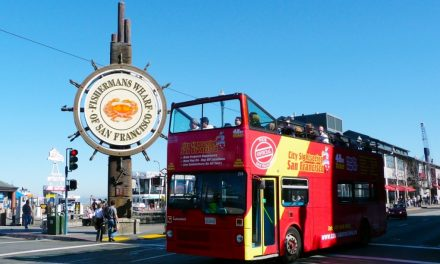 San Francisco im Hop-on Hop-off Bus erkunden mit CitySightseeing
