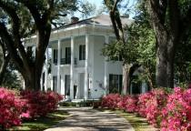 Bragg Mitchell Mansion