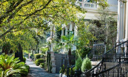 Es Grünt So Grün – Savannah, Georgia