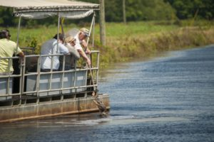 Sumpftour in Louisianas Cajun Country