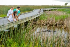 Alligator Ranch in Louisiana