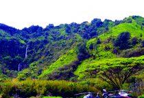 Landung und 30-minütiger Stopp im Hana Regenwald