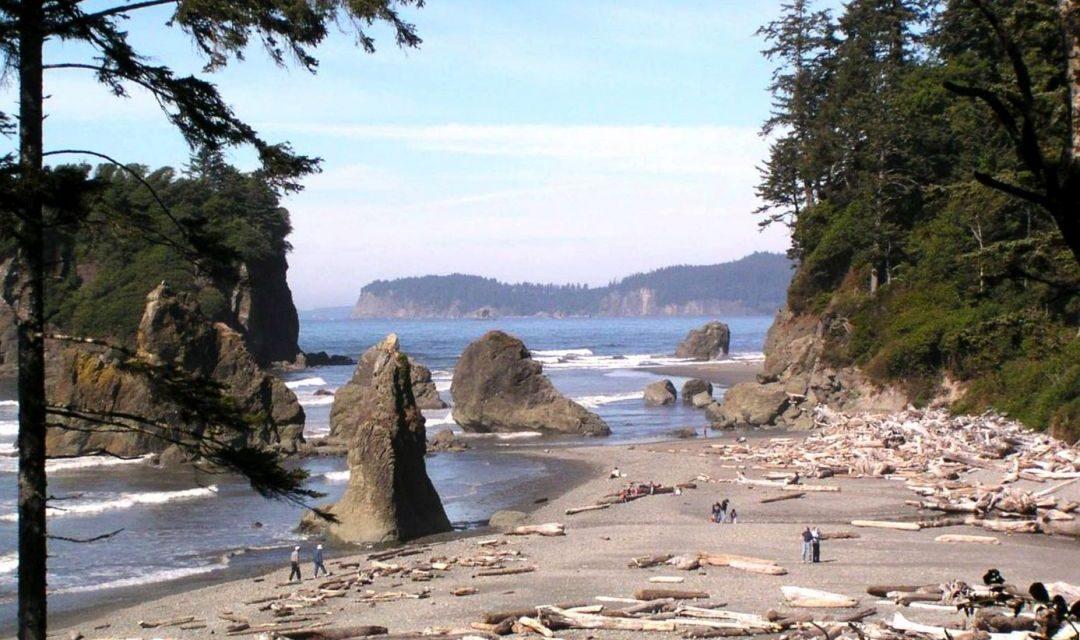 Der Diamant unter den Stränden – Ruby Beach in Kalaloch, Washington State