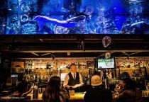 die außergewöhnlichste Bar mit Aquarium und Meerjungfrau