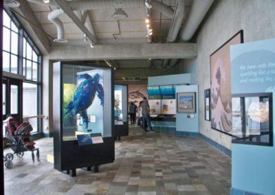Ausstellung zum Thema Umwelt und Schutz der Meere