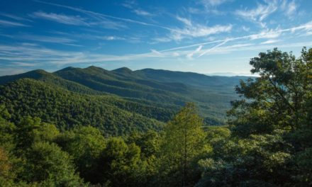 Von Asche zu Rauch: Asheville & die Great Smoky Mountains