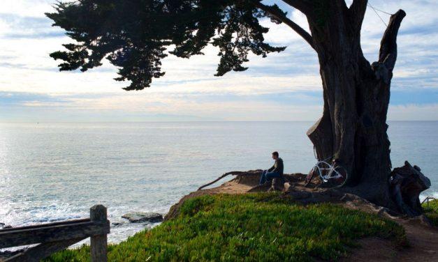 Kalifornische Küstenträume – Santa Cruz County