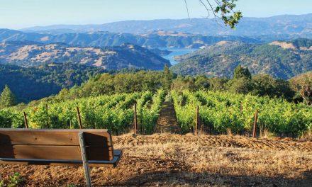 Willkommen im abwechslungsreichen Sonoma County