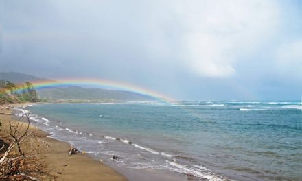 Die besten Küstenwanderwege auf Maui