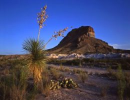 Big Bend Nationalpark