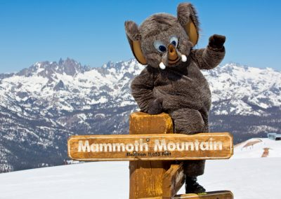 Mammoth Mountain - Maskottchen Woolly