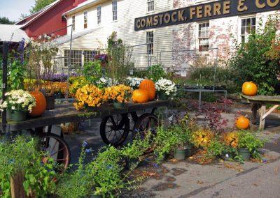 Halloween im Herbst in Connecticut