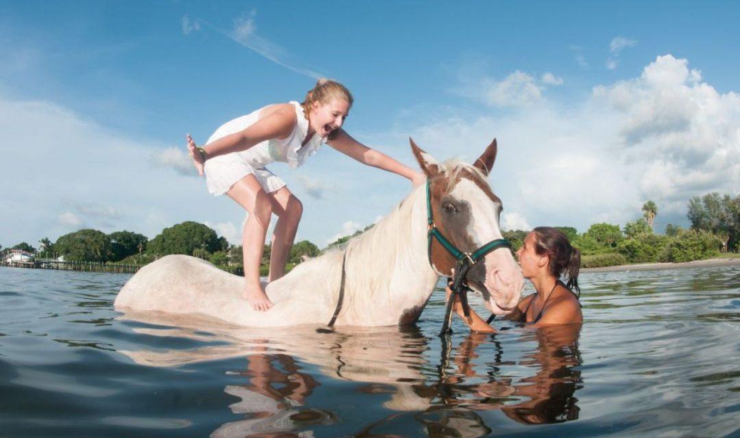 Golfküste Florida mit der Familie: Bradenton & Anna Maria Island