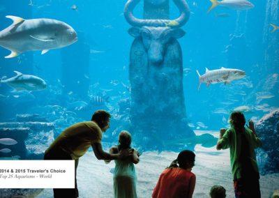 """Aquarium """"Marine Habitat"""""""