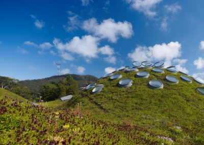 das lebende Dach - Regenwasser wird zur Weiterverwendung aufgefangen