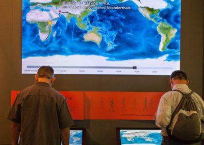 Die Afrika Halle zeigt den Weg des Homo sapiens, der dabei auf die Neandertaler traf.