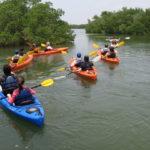 Floridas Natur Entdecken: Outdoor Aktivitäten in Punta Gorda & Englewood Beach