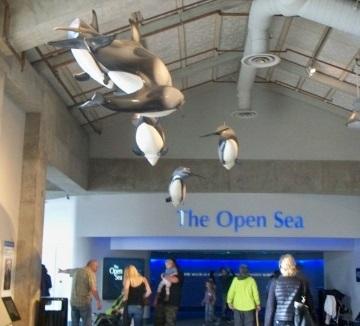 """Eingangsbereich zur Ausstellung """"Open Sea"""""""