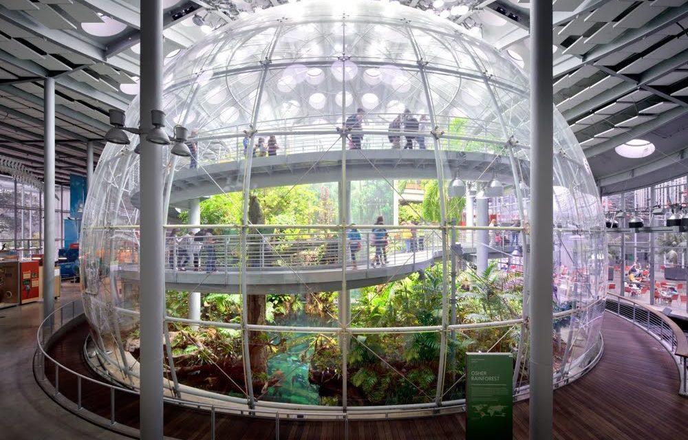 Eine Welt voller Wunder – California Academy of Sciences in San Francisco