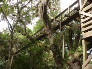 Myakka Park Bridge