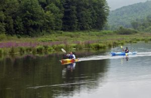 Kayaking Lake Wawaka-East Branch Delaware River