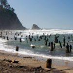 Von Geheimtunneln, Wild-West Ruinen und Geisterwäldern – Mystisches Oregon