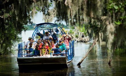 New Orleans Sumpftouren – die Heimat der Krokodile erkunden
